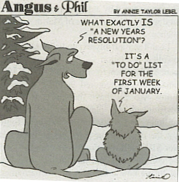 [Image: resolutions-angusandphil.jpg]